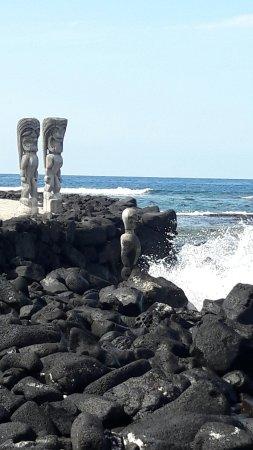 Honaunau, Hawái: 20180111_131722_large.jpg