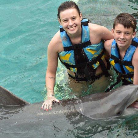 Dolphin Discovery Isla Mujeres: photo2.jpg