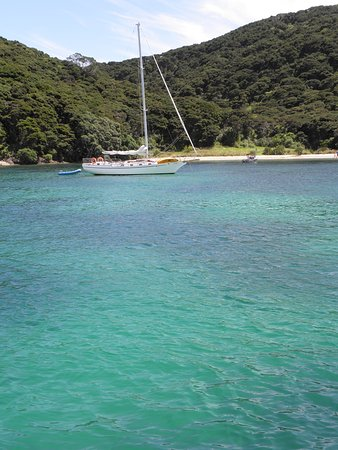 Russell, New Zealand: Colour of the water