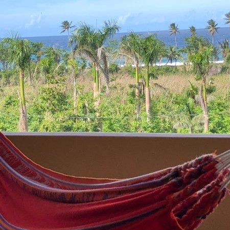 Las Palmas Inn : photo1.jpg