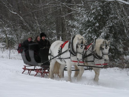 Greenfield Center, Estado de Nueva York: Sleigh Ride for two at Loon Meadow Farm, all of our rides are private.
