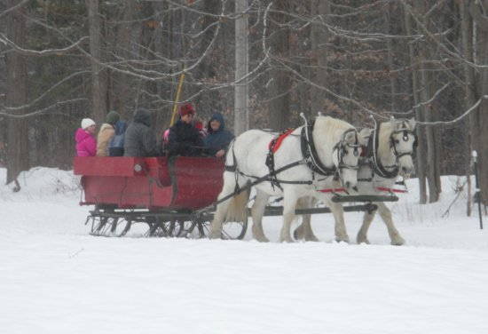 Greenfield Center, Estado de Nueva York: Horses Joe & Sarah know the way to pull the sleigh at Loon Meadow