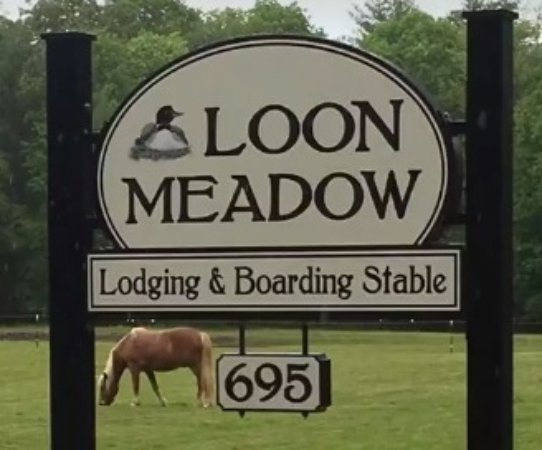 Greenfield Center, Estado de Nueva York: Traveling with your horse? Loon Meadow has a stalls and turnout available.