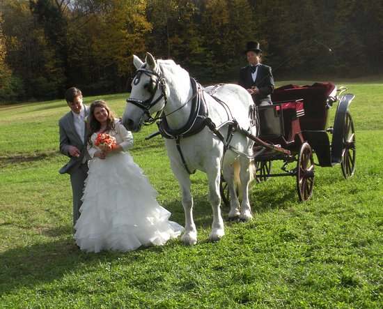 Greenfield Center, NY: Enhance the romance with a horse and carriage from Loon Meadow Farm!