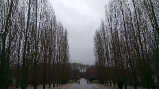 Palace of Versailles: Jardins