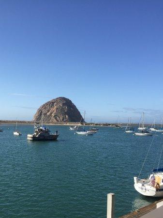 Estero Inn: Morro Rock from the Bayview room.