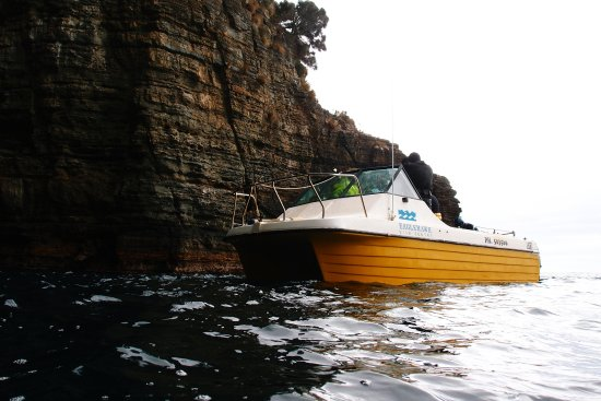 Eaglehawk Neck, ออสเตรเลีย: Boat at the entrance of Cathedral Cave