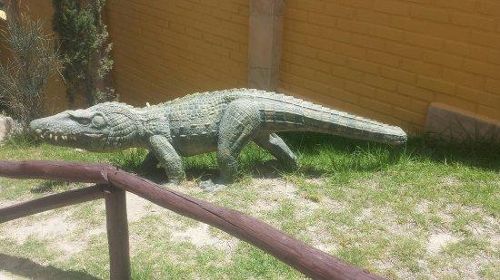 Dinosaur Tracks (Cal Orck'o): Visita al parque