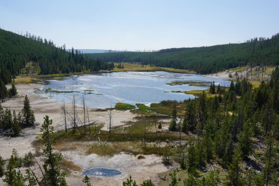 Norris Geyser Basin: overview of Porcelain Basin