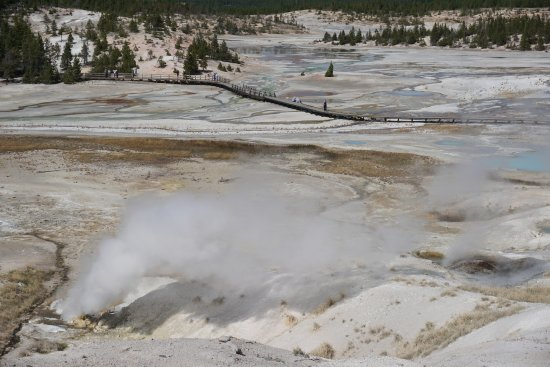 Norris Geyser Basin: steam vent