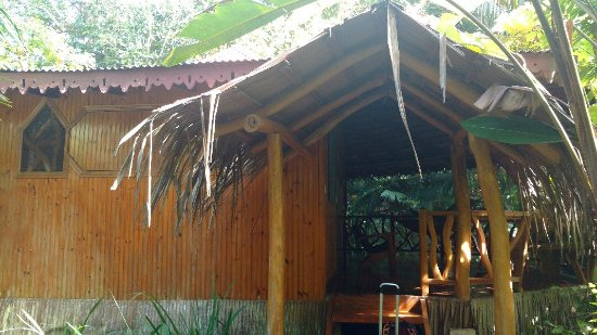 Hotel La Costa de Papito: IMG_20180117_135452157_large.jpg