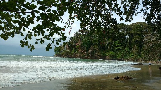 Punta Uva, Costa Rica: IMG_20180118_142724580_large.jpg