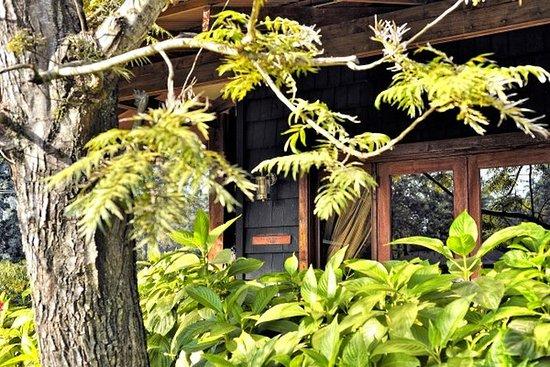 Arusha Coffee Lodge: Guest room