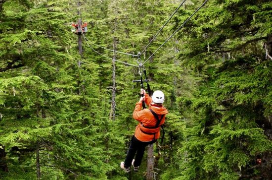 Douglas Island Zipline Tour from...