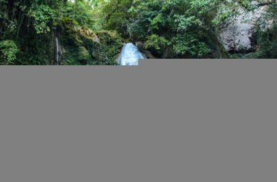 オスロブでジンベイザメとカワサン滝を満喫する日帰りツアー