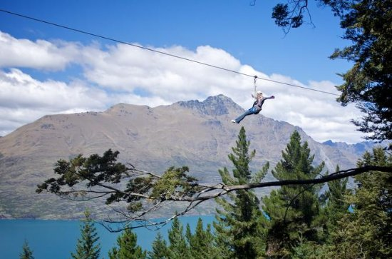 Zipline with Wine Tasting Combo Tour from Queenstown