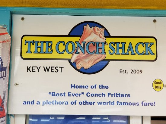 The Conch Shack: 20171205_112532_large.jpg