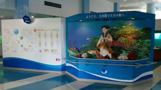 Sea Turtle Museum of Kumejima