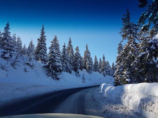 Maramures County, Rumænien: Prislop Pass