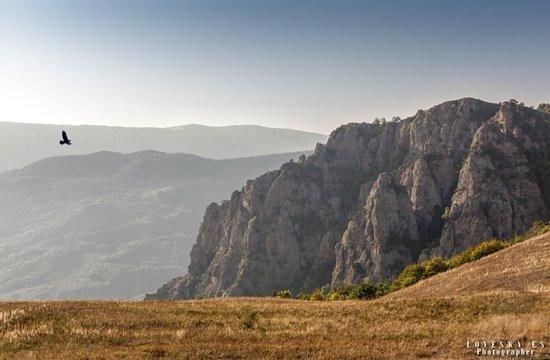 Alushta Municipality: Демерджи
