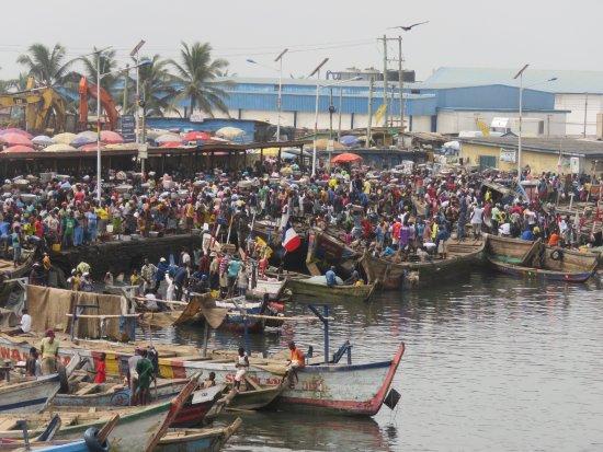 Foto de Elmina lagoon