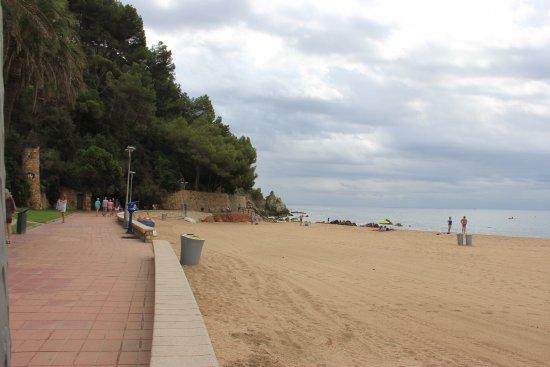 Playa de Fenals: Пляж Феналс