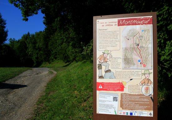 Tours de Montmayeur