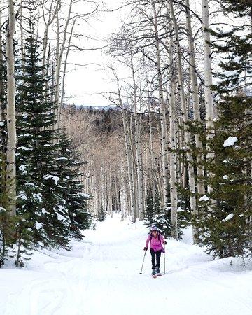 The Home Ranch : Skiing at Hahns Peak