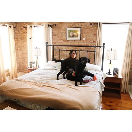 Dog Friendly Bed And Breakfast Woodstock Ny