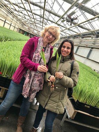 bij-Ellen: Ellen explaining how they 'pick' the tulips
