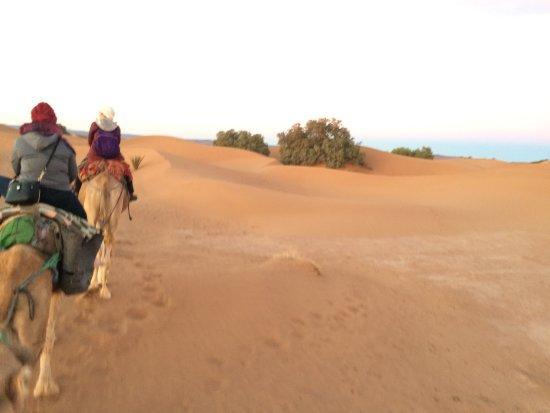 Explore Morocco Trips