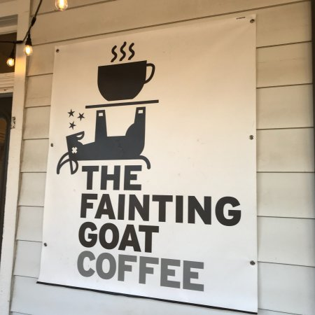 The Fainting Goat