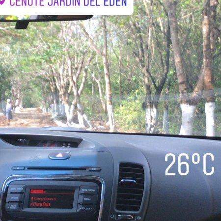 Cenote Jardin del Eden: photo1.jpg
