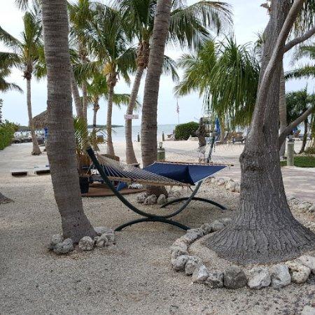 Island Bay Resort-billede