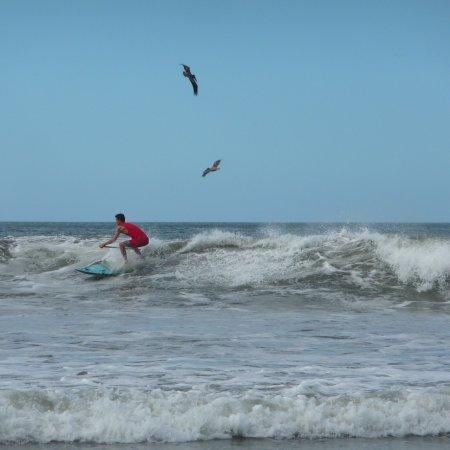 Nosara Beach (Playa Guiones): photo2.jpg