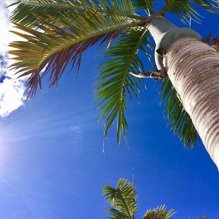 Royal Palms Hotel: photo0.jpg