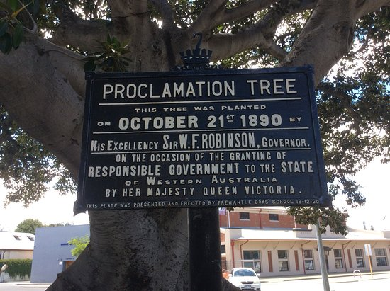 Proclamation Tree & Marmion Memorial