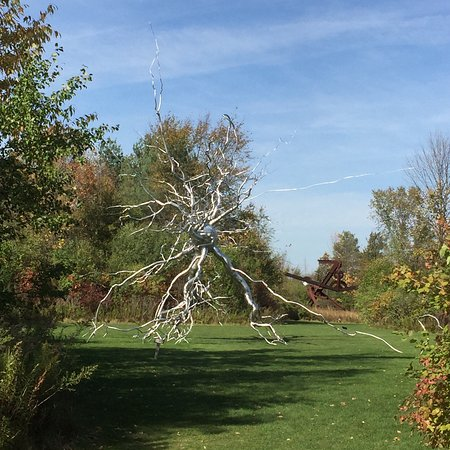 Frederik Meijer Gardens Sculpture Park Grand Rapids All You Need To Know Before You Go