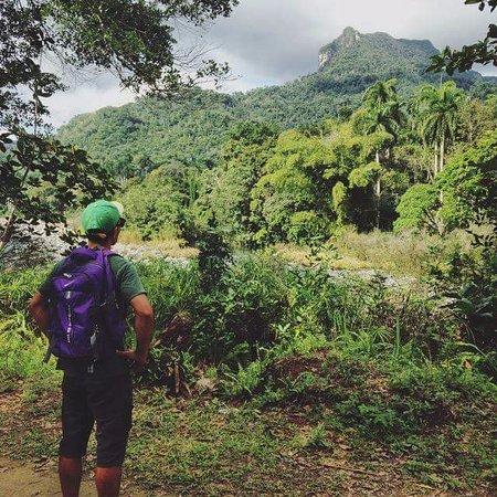 Alber The Hiker: Let's do el yungue today.