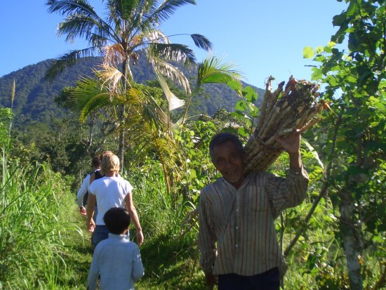 The Organic Farm & Cafe Bali