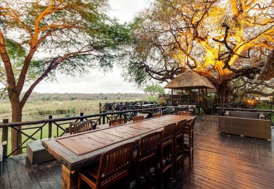 Skukuza, Südafrika: Other