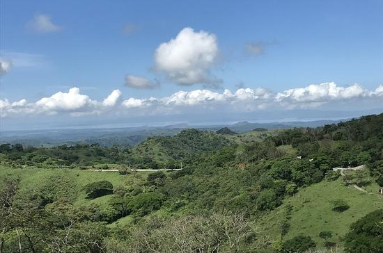 Full Day Monteverde Cloud Forest Tour...