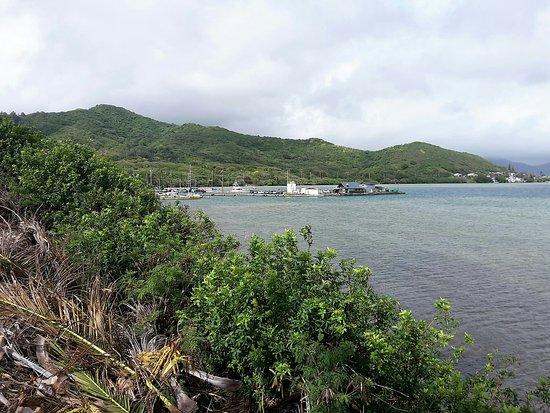 Coconut Island Kaneohe Tour