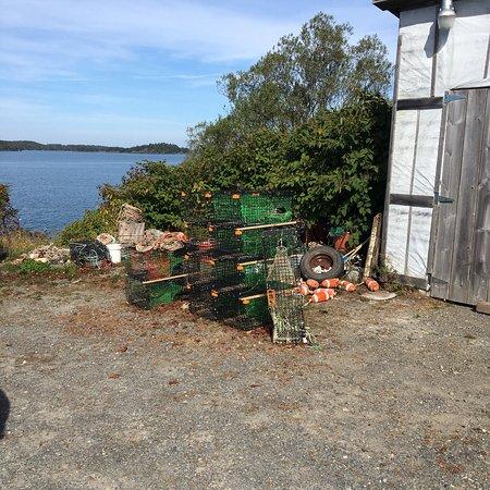 Lubec, Maine: photo1.jpg