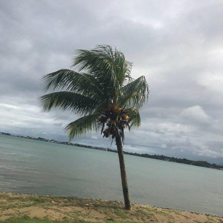 Playa Tortuga Hotel & Beach Resort: photo0.jpg