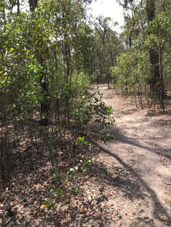 Heyfield, Australia: Blores Hill Mountain Bike Park