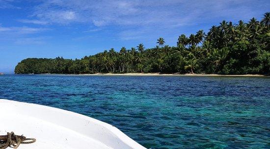 Matanivusi Surf Resort: The Resort is in there!