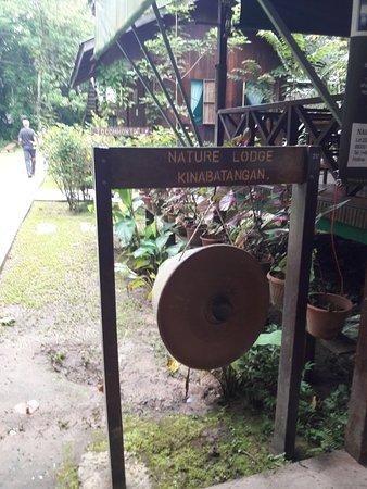 Nature Lodge Kinabatangan: 20180124_075755_large.jpg