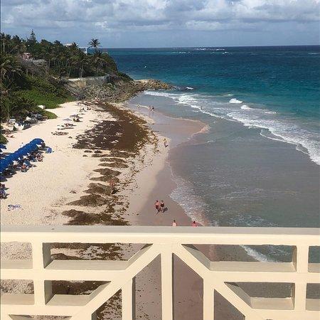 L Azure Restaurant Barbados Tripadvisor