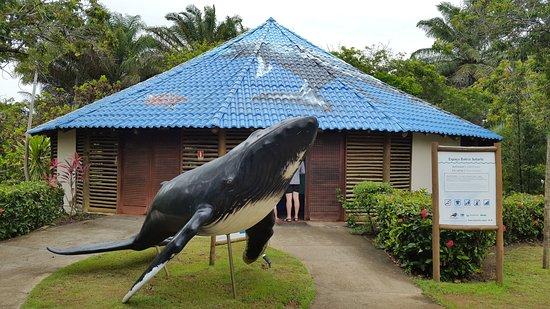 Centro de Visitantes Espaço Baleia Jubarte